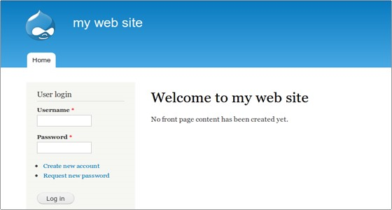 Website on Drupal 1